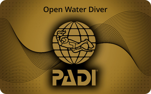 calypsodivecenter_cards_openwaterdiver